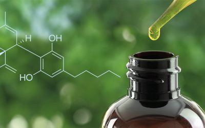 What Is CBD? Everything You Should Know About Cannabidiol